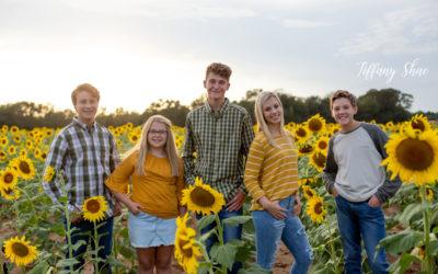Holland Farms, Milton Photographer